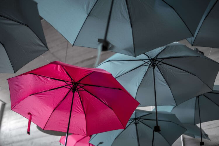 fde399851 8 Best Travel Umbrellas in 2019 | Land Of The Traveler